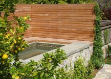 Privacy-fence-surrounding-a-custom-built-spa-217x155