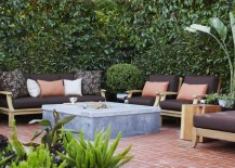 Privacy-hedge-created-by-Photinia-trees-217x155