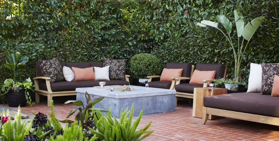 10 privacy plants for screening your yard in style for Creating privacy on patio