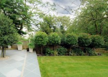 Sculpted Photinia trees add height and interest to the backyard