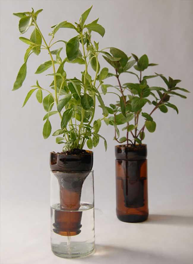 Self Watering Planter DIY