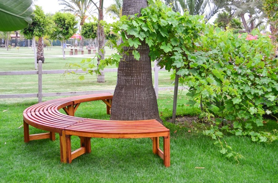 Semicircle tree bench from Forever Redwood  Tree Bench Ideas for Added Outdoor Seating Semicircle tree bench from Forever Redwood