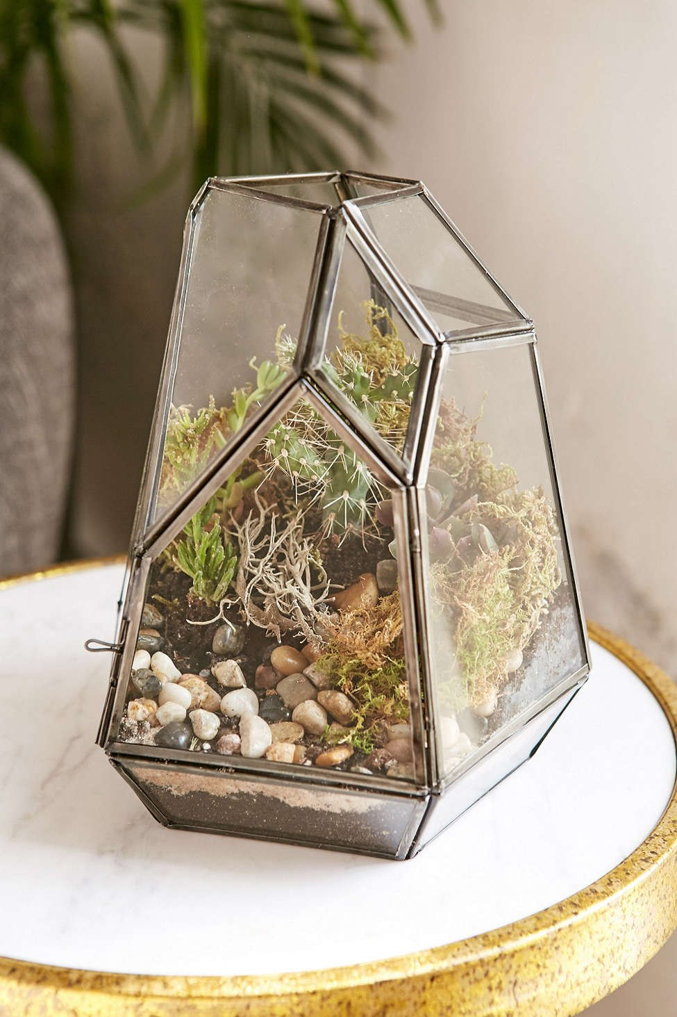Smoked glass terrarium from Urban Outfitters