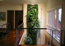 Tall living wall in an airy hallway