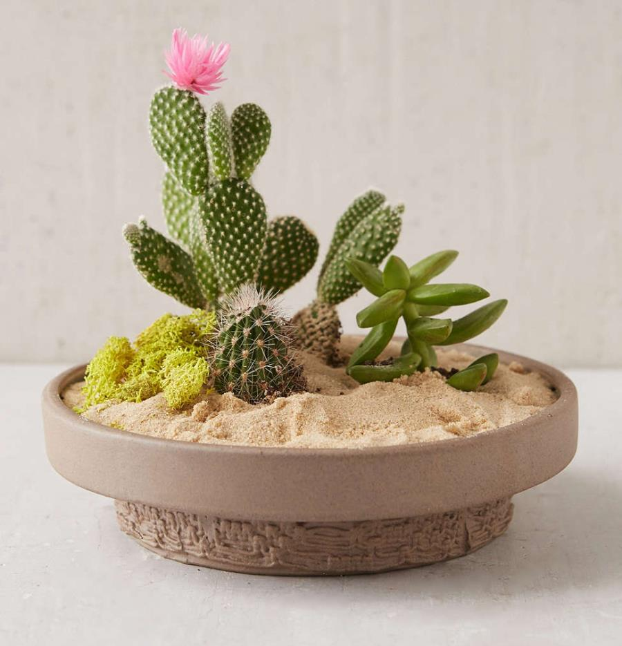 Unique planter from Urban Outfitters