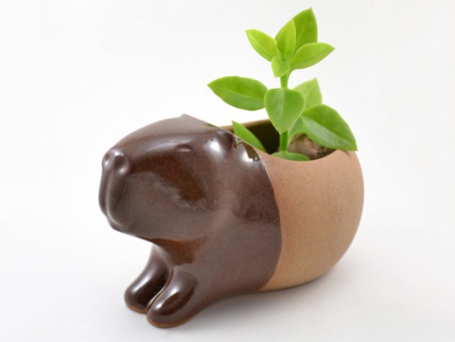 animal planter gopher 2