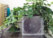 cd planter 2 217x155 8 Inspiring DIY Ideas for Upcycling Old CDs