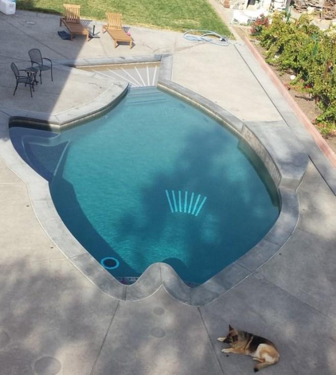 fish pool 15