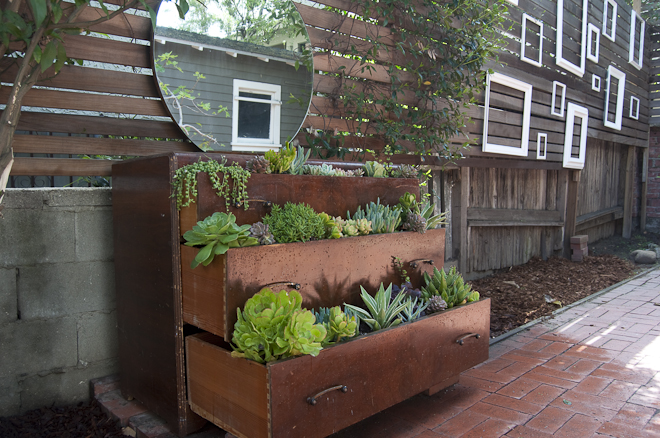 herb garden 12