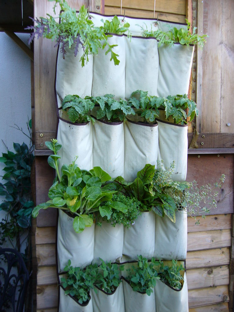 Vertical Kitchen Garden 8 Space Saving Vertical Herb Garden Ideas For Small Yards Balconies