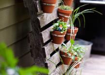 herb garden 9