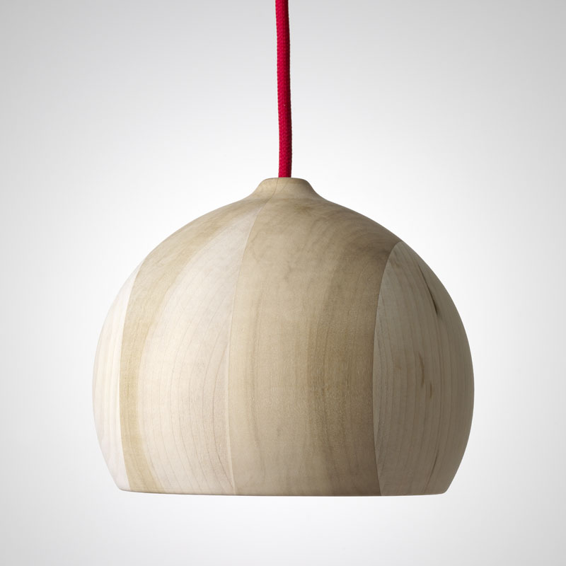 Acorn in tulipwood