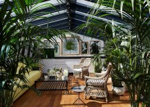 Add greenery to visually enrich that sunroom and create some shade