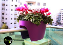 Add some color to any small balcony