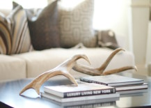 Antlers placed on coffee table 217x155 18 Creative Ways to Decorate with Antlers