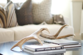 Antlers placed on coffee table  18 Creative Ways to Decorate with Antlers Antlers placed on coffee table 270x180
