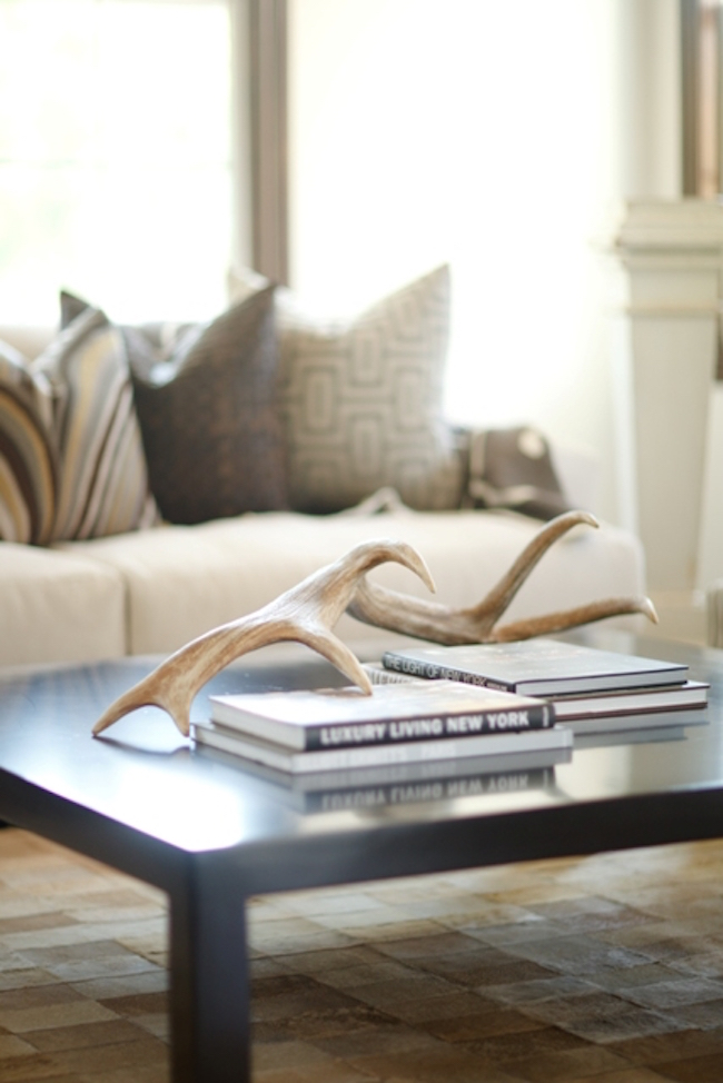 Antlers placed on coffee table