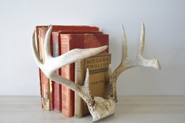 Antlers used as book ends  18 Creative Ways to Decorate with Antlers Antlers used as book ends 270x180