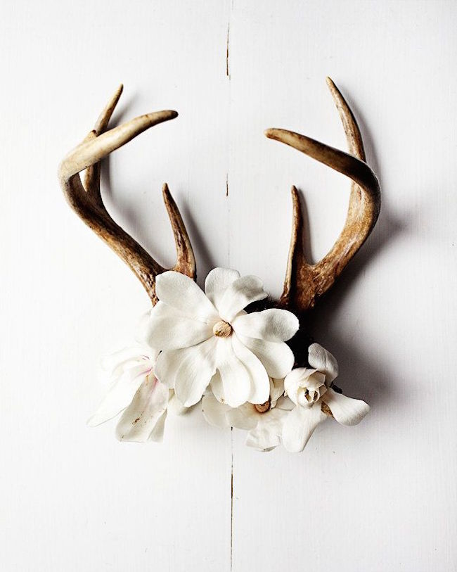 Antlers with flowers used as wall art