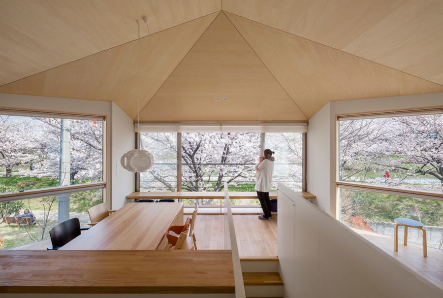 Cherry blossoms surrounding a modern interior