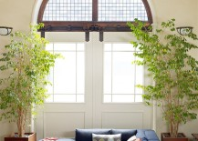 Comfy-sectional-and-greenery-create-a-refreshing-ambiance-indoors-217x155