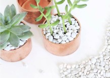 Copper cap succulent planter from I Spy DIY