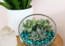 DIY aquarium rock planter from A Beautiful Mess 217x155 Fun and Festive DIY Gifts