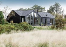 Dark-exterior-of-the-cool-Trend-Summer-House-in-Denmark-217x155