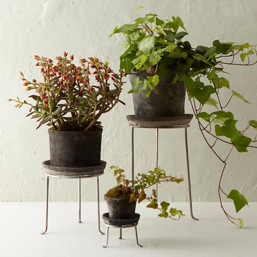 Footed plant stands from Terrain