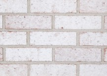 Frosted-white-bricks-from-The-Belden-Brick-Company-217x155