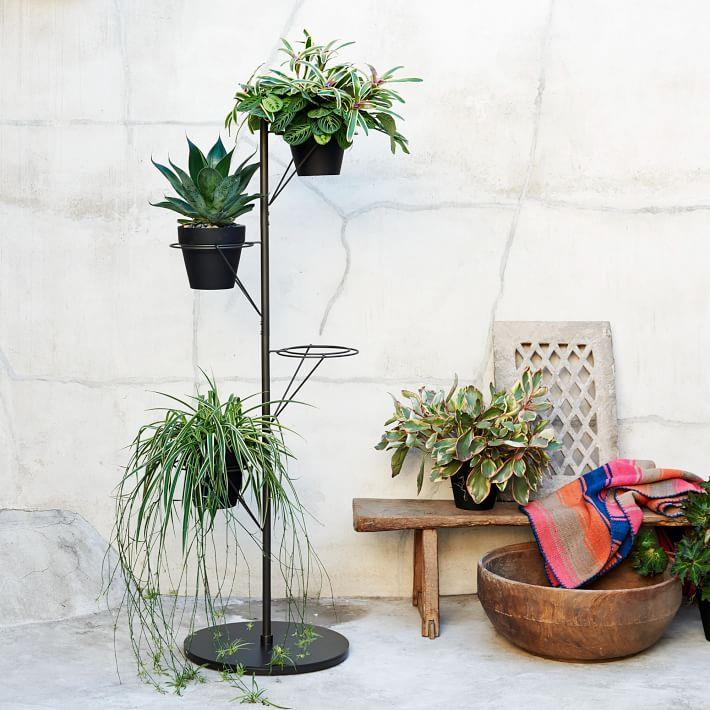 Metal plant stand from West Elm