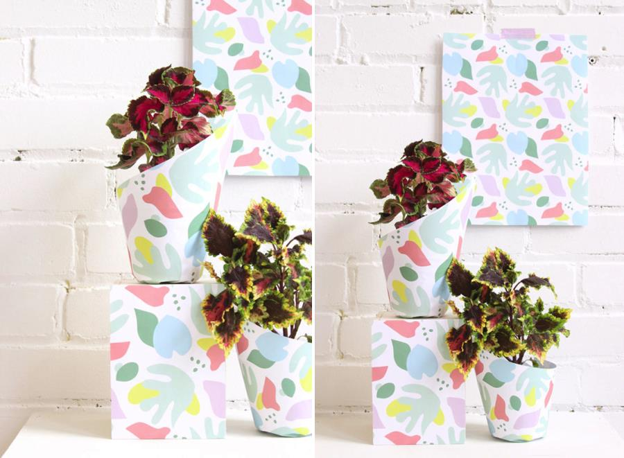Plants wrapped in printable paper by Design Love  Fest