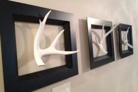 Real antlers painted white and displayed with black frames  18 Creative Ways to Decorate with Antlers Real antlers painted white and displayed with black frames 270x180