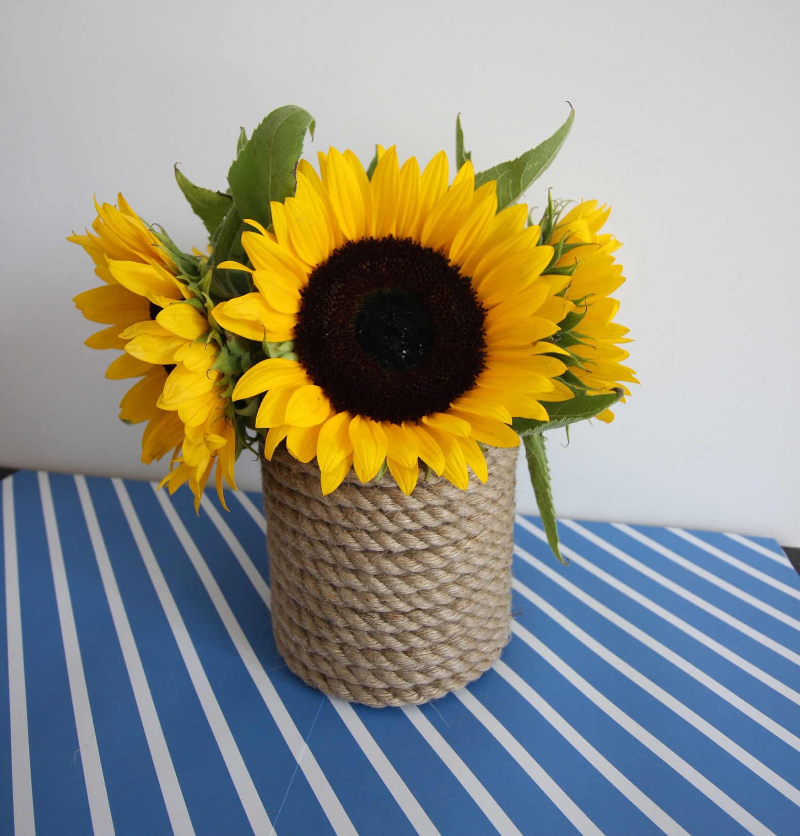 How to make diy rope wrapped vases with nautical flair view in gallery rope wrapped vases diy sunflower reviewsmspy