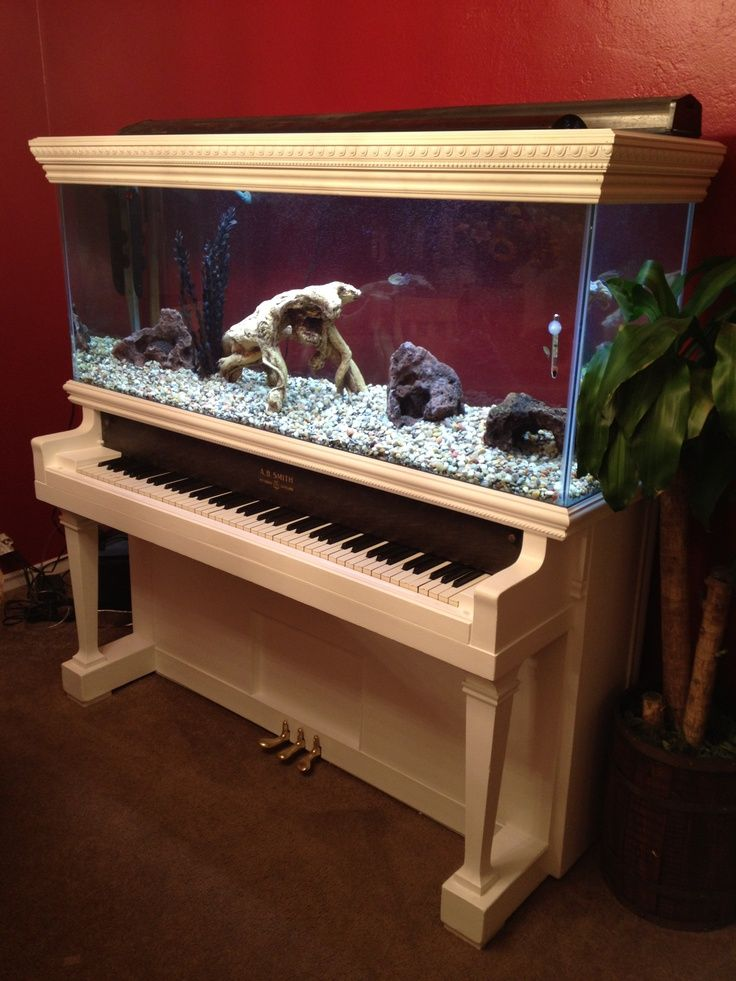 Aquarium built into a white piano