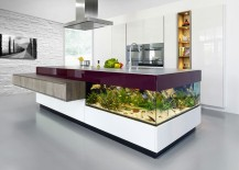 Aquarium built into kitchen counter