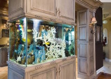 Aquarium built into kitchen cupboards