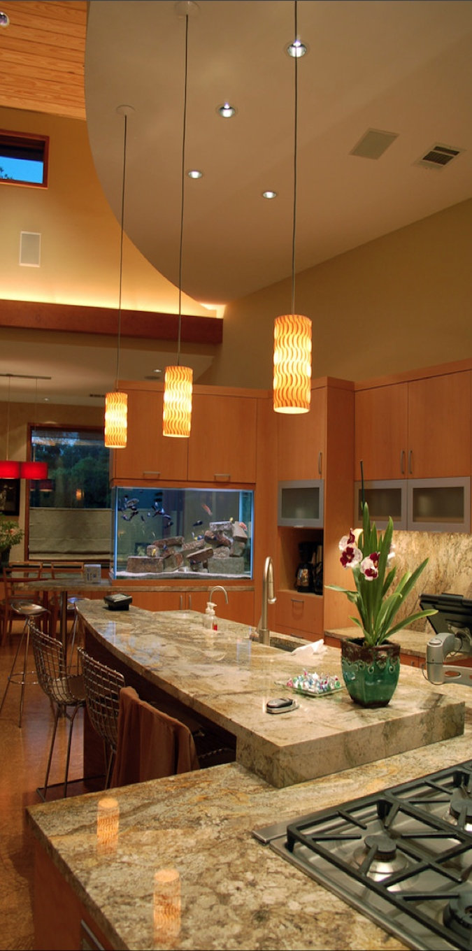 Aquarium built into kitchen cupboards and countertop