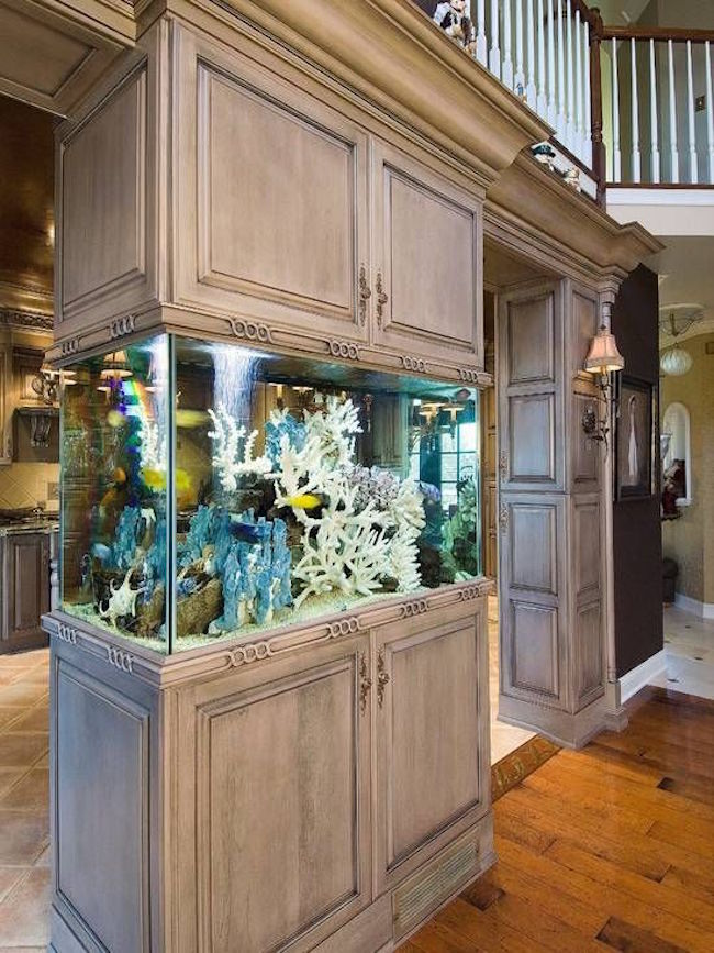 Aquarium built into kitchen cabinetry