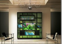 Aquarium built into shelving unit