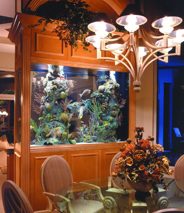 8 extremely interesting places to put an aquarium in your home - Dining room living room separation ...