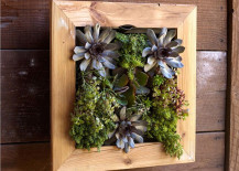 Bambeco Recycled Wood Indoor Vertical garden Planter