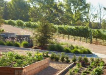 Beautiful Santa Barbara garden