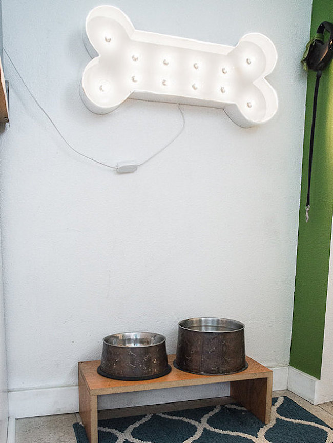Bone-shaped marquee sign hung above dog dishes