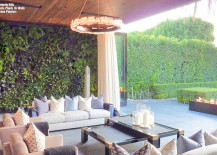vertical garden on wall of outdoor patio