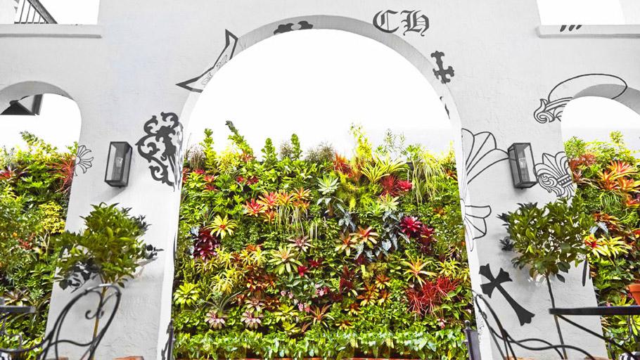FloraFelt Vertical Garden Seen Through Large Arch