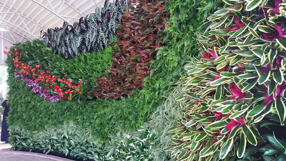 FloraFelt Vertical Garden Wall of Greenery