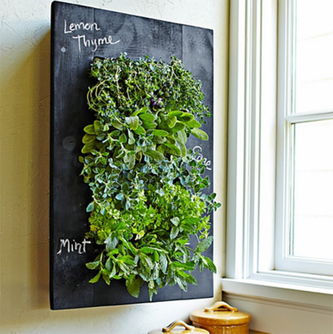 GroVert Planter with Chalkboard Frame