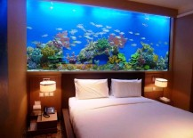 8 Extremely Interesting Places to Put an Aquarium in Your Home on home construction designs, home decor designs, home beach designs, home school designs, home art designs, home archery range designs, home library designs, home entertainment designs, home salt designs, home cooking designs, home park designs, home castle designs, home plans designs, home water feature designs, florida home designs, home lake designs, home gardening designs, home glass designs, home dog kennel designs, home cafe designs,