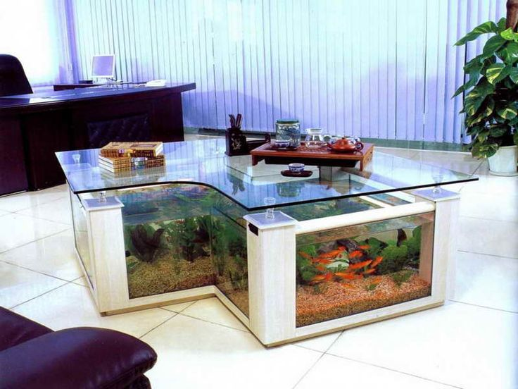 View In Gallery Large Coffee Table With Built Aquarium